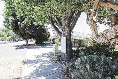 Residents of side streets off Albany Highway have expressed concern at an amendment.