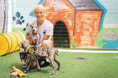 Dogs Refuge Home general manager Judy Flanagan with puppies Scarlet, Suzie and Smokey.