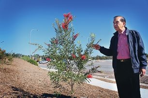 Ballajura resident Henry Chok wants more trees and shrubs planted to block noise from Hepburn Avenue.