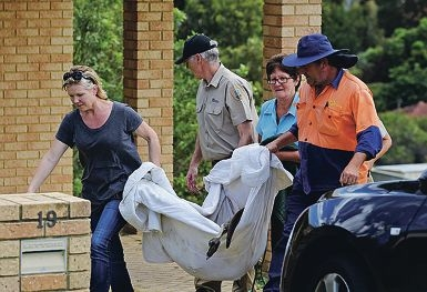 Senior Dept of Parks Wildlife Officer Rick Dawson (centre) and helpers carry the injured kangaroo.