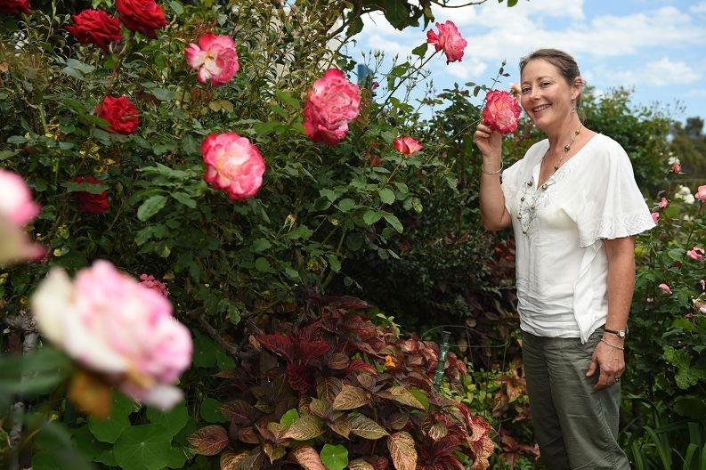 Bayswater resident Alison Dorn.