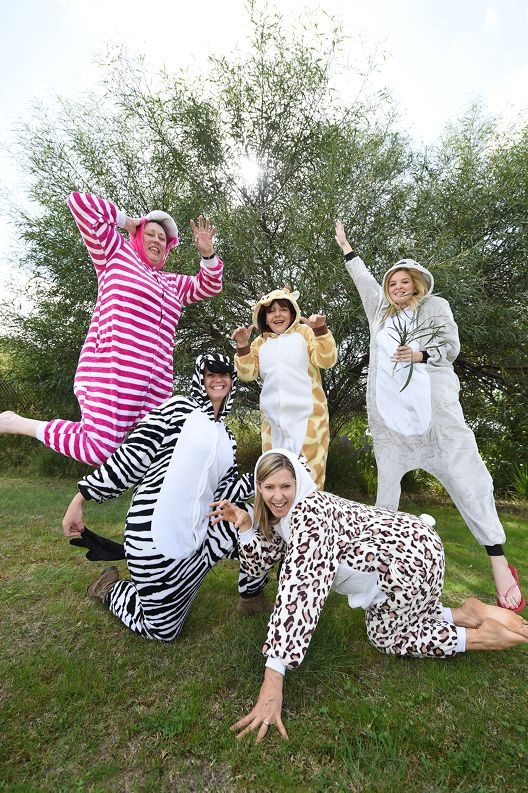 RSPCA staff, clockwise from bottom, Deida Nicholls as a kitty cat, Molly Haworth as a zebra, Sharon Donoghue as a cheshire cat, Sylvie Bromfield as a giraffe and Laura Stevenson as a koala.Picture: Marcus Whisson d427038