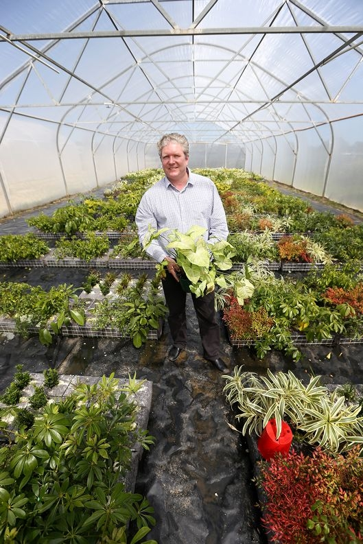 Landscaper Martin Cuthbert is helping grow Perth's largest vertical garden. Picture: Andrew Ritchie d426287
