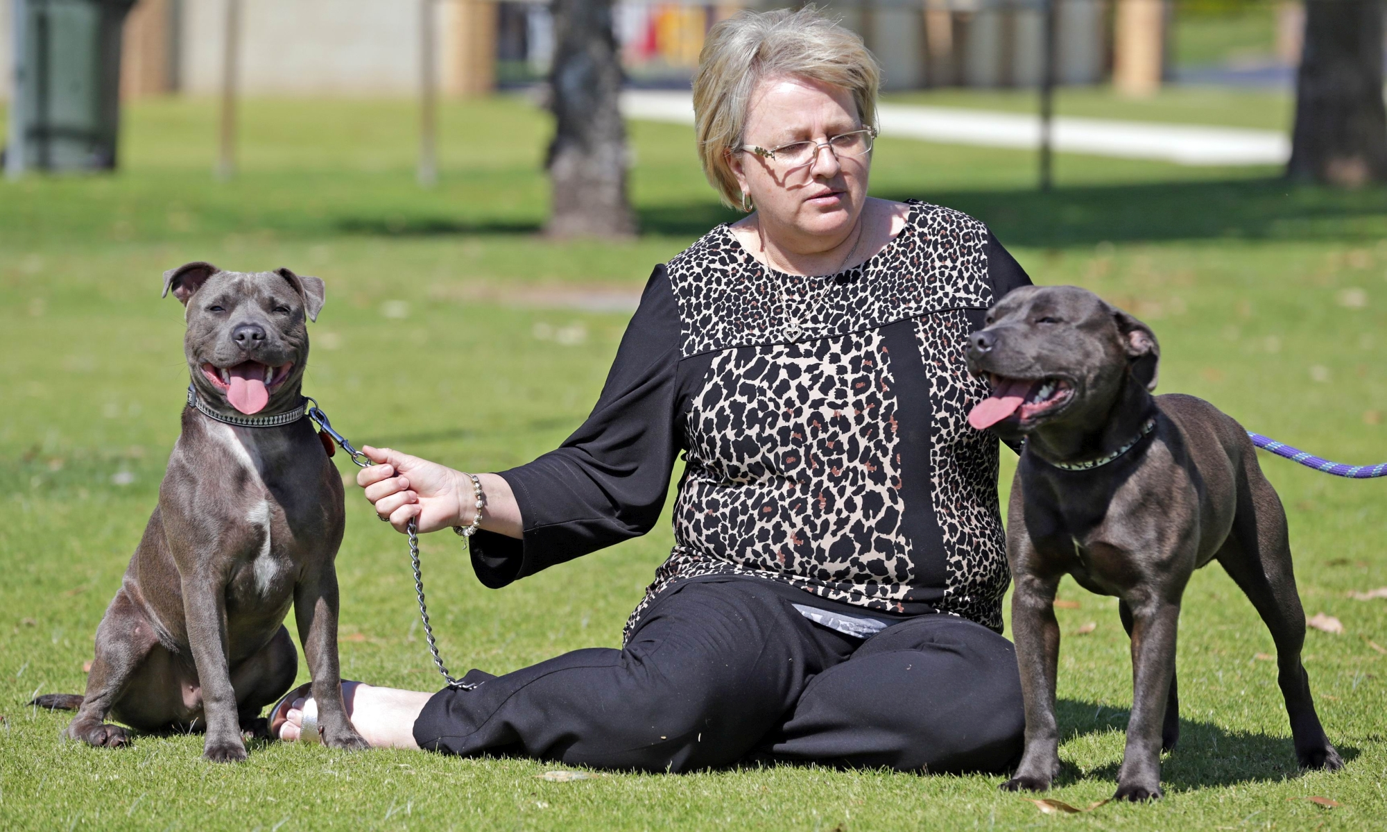 Ingrid Pietroniro with her dogs Tyson and Riley. Tyson was stolen from her back yard in February but was found on the street and identified by his microchip.