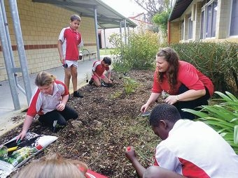 Students from Waddington Primary school planting native trees and shrubs.