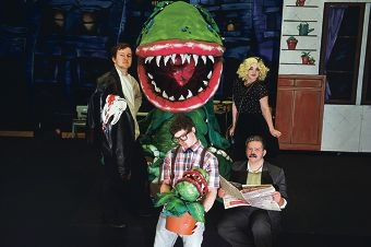 Year 11 students Antony Mooney, Cody Rance, Raine van Dyle, Jamie Minto are the main characters in Little Shop of Horrors. Picture: Emma Goodwin d424026