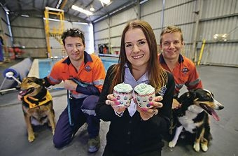 Trainer Stephen Robinson, student contact officer Lauren McLeod and junior trainer Adam Richards are looking forward to supporting Cupcake Day to help the RSPCA.