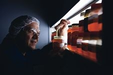 Capilano Honey WA sales manager Michael Bellman checks jars of honey. Picture: Marcus Whissond423430