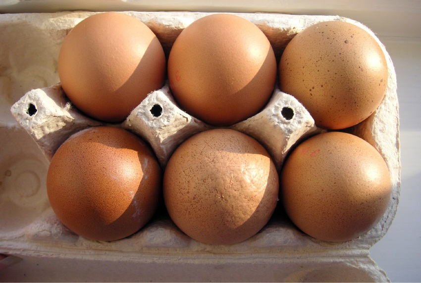 Swan Valley eggs producer considers appeal against Federal Court ruling on free range eggs