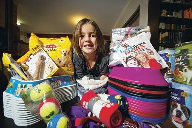 Tilly Schmidt has collected bag loads of food and other goodies for the Dogs' Refuge Home.