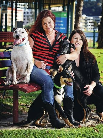 Faith Sharkey of Ballajura and Alisa Guillory of Bassendean with Tyson (5 yrs), Smilie (11 mths old and sitting at front) and Axel (4 mths old and on the far right).  Desperate for Love Dog Pound Rescue Inc are holding a fundraiser event in South Perth.