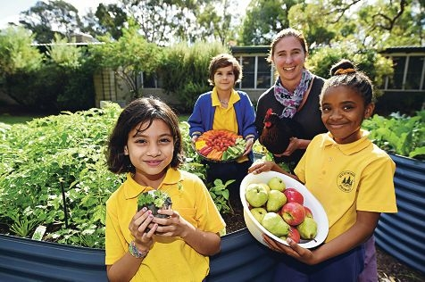 Year 3 students Yesh Rughoonath, Daniel Stevens and Emily Jallah in the school vegetable garden with teacher Sharon Walton and the school's chicken, Berry. Picture: Marcus Whisson www.communitypix.com.au d420625