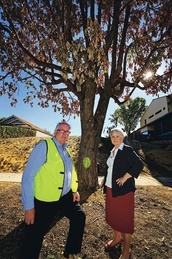 L-R: John Murray (Streetscapes and Environment Supervisor) and Mayor Sue Doherty (City of South Perth Mayor).  A tree in Hensman Street in South Perth has been vandalised and poisoned.