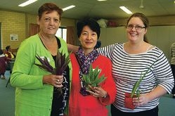 Lyn Haast, Ja-On Park and Alicia Edwards get into potting plants. Picture: Emma Reeves www.communitypix.com.au d419036