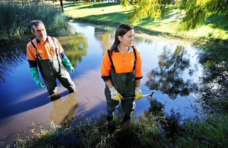 L-R: Max Box of Bassendean (Natural Areas Team Leader) and Janelle de Silva of Kenwick (Natural Areas Attendant).  People are feeding ducks at Mitchell Park in Bentley and it's bad for the animals and environment.