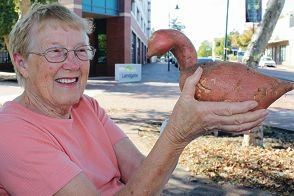 Myrtle Taylor with her swan-shaped sweet potato. Picture: Sophie Gabrielle