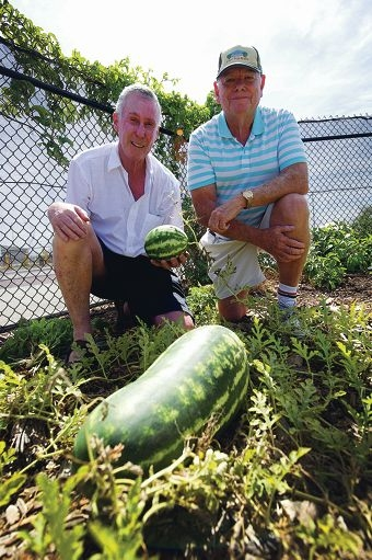 Community Garden chairman Bernard Terry with Peter Smethurst. Picture: Emma Reeves d417364