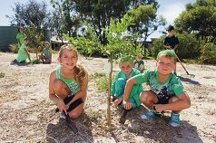 Digging in... Ella Jackson, Zavier Hislop and Nicholas Jackson with other students in the community garden. d416924