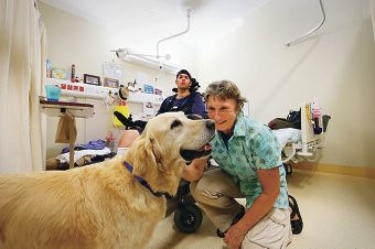 Patient Mitchell Cleary with golden retriever Sophie and owner Roz Hart. Picture: Andrew Ritchie www.communitypix.com.au d416874