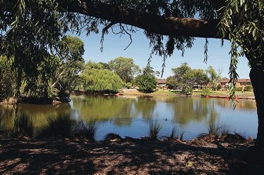 Marmion Lake after it was drained and cleaned. Pictures: Martin Kennealey www.communitypix.com.au d417091