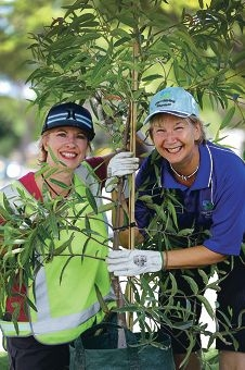 Green streets: Community tree officer Elana Walsh-Negus with volunteer street tree captain Barbara Taylor. Picture: Andrew Ritchie www.communitypix.com.au d415778