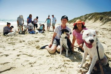Pauline Wimsett and Lorraine Jackson with dogs Jimmy and Onyx, and other residents who petitioned to extend the dog beach. Picture: Emma Reeves d414551