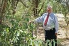 John Squarcini wants the council to clear firebreaks around Lake Adams. d415109