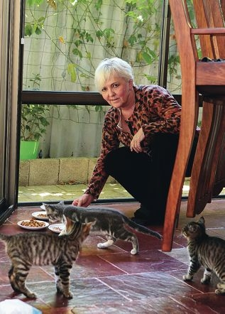 Kay Hardie with Truffles and two of the other abandoned kittens. Picture: Martin Kennealey www.communitypix.com.au d413817