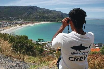 In Cape Town, observers, beach signs, public education and research are used to manage shark activity. Picture: Shark Spotters