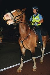 Constable Zach Barry and his horse Jack on patrol.