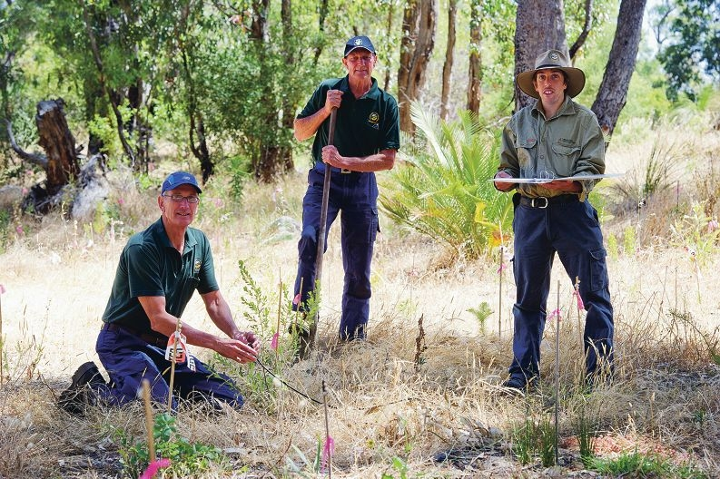 From Left: Ray Turner, Dave Mulholland, Bill Brookes have all been awarded for their outstanding services at Yanchep National Park