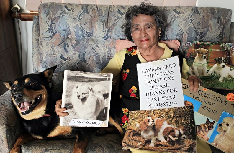 Maureen Gordon is looking for someone to carry on her work. Picture: Elle Borgward www.communitypix.com.au d411951