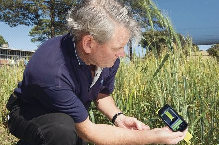 Rob Emery uses the new smartphone app SnapCard to assess spray droplet coverage on leaves.