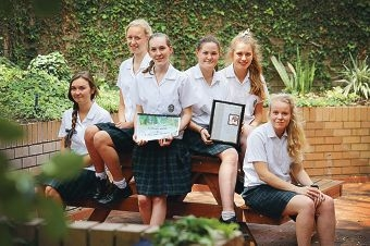 PLC's winning Book in a Day team: Emily Cooke, Lena Hindenberg, Abbey Wackett, Annique Cockerill, Kathryn Froend and Ellen Frodsham Picture: Andrew Ritchie d410545