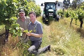 Vineyard manager John Smith-Wright with Keith Pekin.