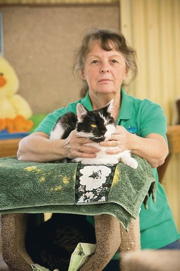 Gail Heazle with Bobby. More cats have been dumped as the law deadline nears. Picture: Louise White www.communitypix.com.au d410067
