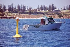 A shark monitoring network receiver off Perth's coast.