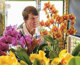 Dianella resident Bruce Larson with some of his beautiful orchids. Picture: Marcus Whisson d408771