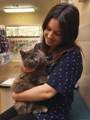 Smokey the cat with Armadale Byford Vet Hospital veterinarian nurse Felicity Kelleher. Picture: Matt Jelonek d408800