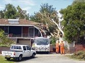 Stirling SES workers at the house on Sunday morning.