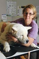 Vet Janine Hanks with healthy dog Jordan. Picture: Jon Hewson