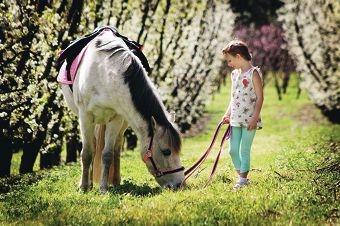 Make-A-Wish recipient Fae Spearman with her pony Gypsy.