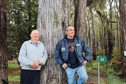 Perth Hills fruit growers Tony Marchetti and Michael Padula.
