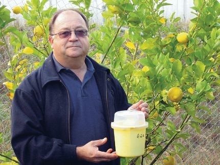Department of Agriculture community liaison officer Ernie Steiner will discuss ways to control Mediterranean fruit fly.