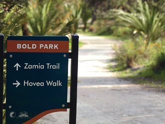 The Zamia Trail on the Bold Park leg of the Bush to Beach Trail.