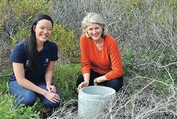 Bandicoot refuge initiative gets a boost