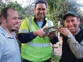 Murdoch University's Peter Adams, Tronox's James Owens and Department of Parks and Wildlife's Robert Huston with a long-necked turtle.