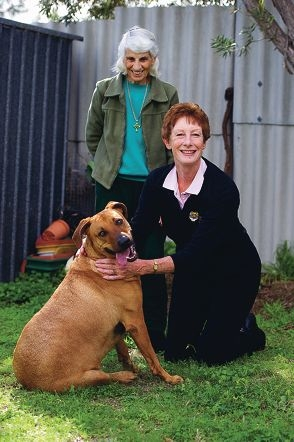 Inge Kuemmeth and her dog Gypsie with Jan Russell-Brown, of Pets of Older Persons. Picture: Emma Reeves d405764