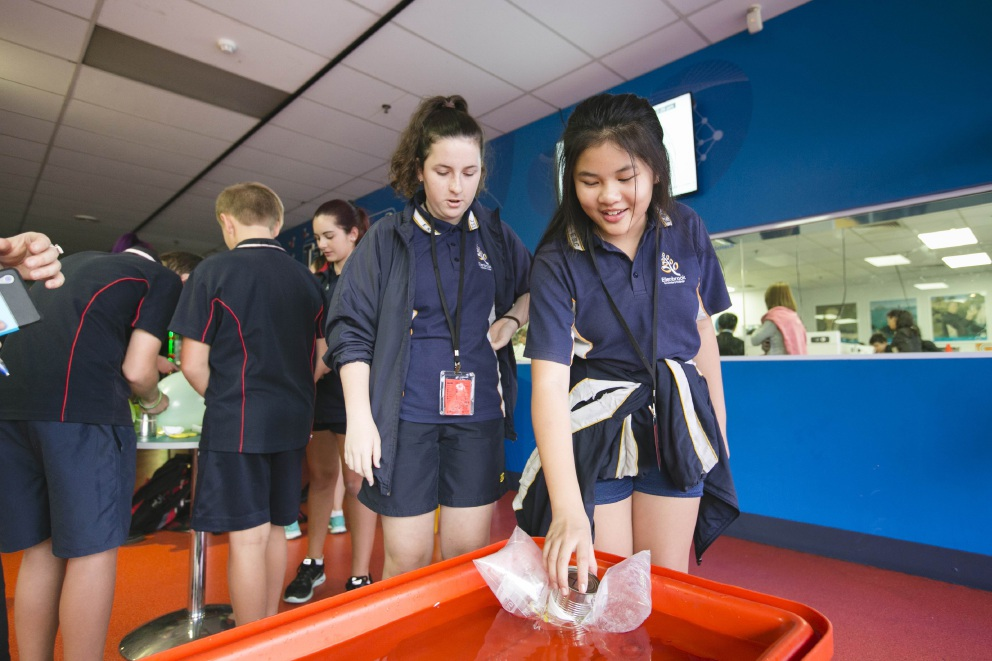 Ellenbrook Secondary College Students Brodie Duncan and Jasmine Tang taking part in the engineering challenge. Picture: Daniel Grant