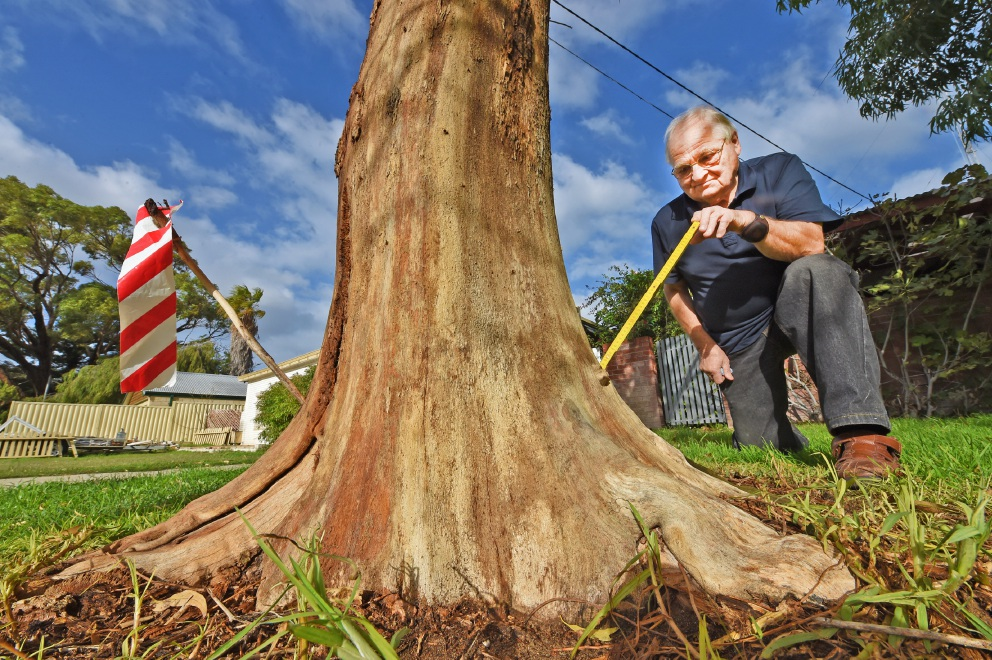 Warnbro man's trees poisoned